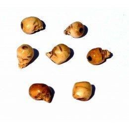 Perles têtes de mort en os 10,5x8,5mm x 2